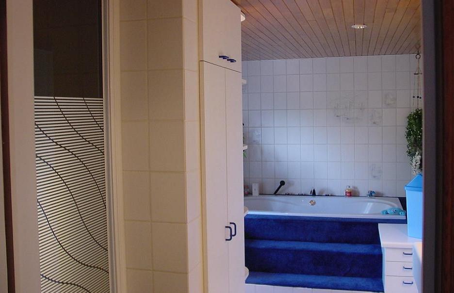 douche avec porte pivotante. Black Bedroom Furniture Sets. Home Design Ideas